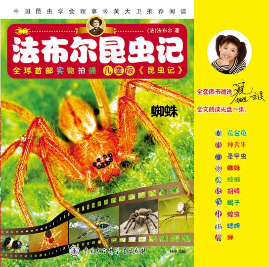 《蜘蛛》绘本简介