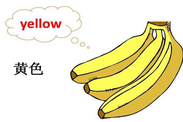 少儿英语水果单词有哪些?