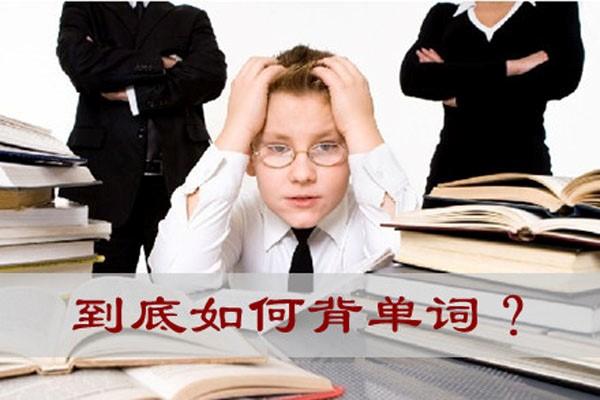 幼儿初学英语怎么让其认识到学习的重要性?