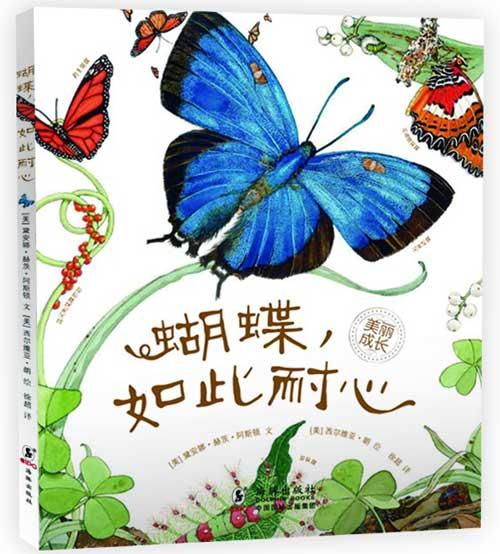 《蝴蝶,如此耐心》绘本简介