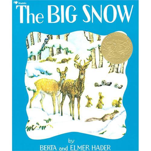 《Big Snow 大雪》绘本简介